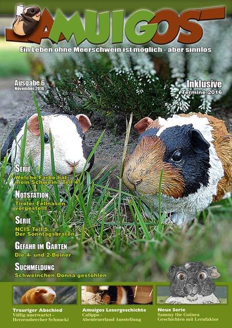 Newsbilder: amuigos_6_2016_cover.jpg